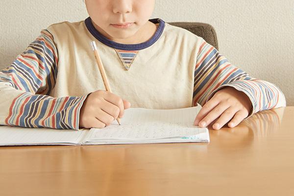 高額な養育費の支払いにつき合意が成功した事例